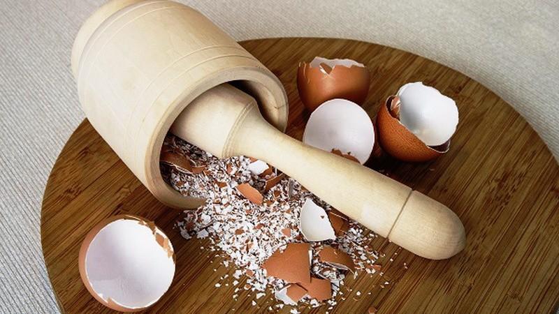 Стане в нагоді: 7 причин, чому дачникам не варто викидати яєчну шкаралупу