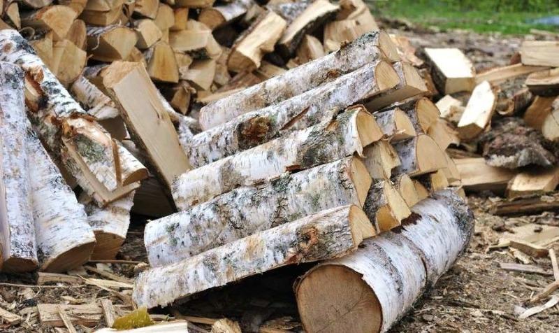 3 факти про дровах, які змусять перебрати дровах