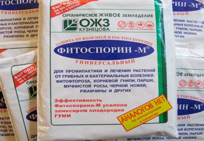 5 менш шкідливих препаратів, які замінять мідний купорос