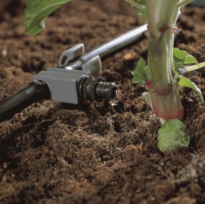 Які плюси і мінуси різних способів поливу рослин