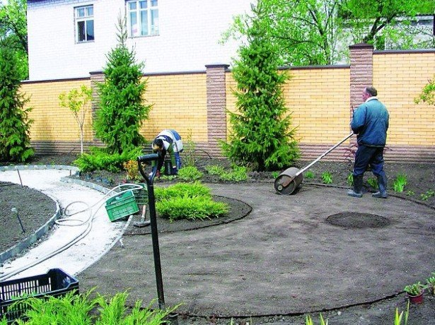 Як правильно посіяти газонну траву, щоб отримати ідеальний зелений газон