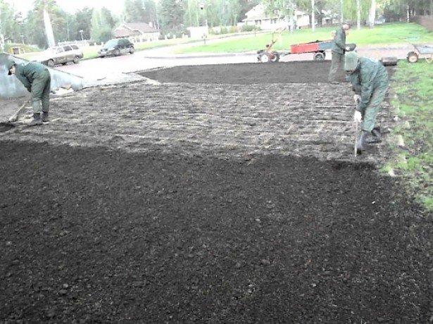 Коли садити газонну траву, і як домогтися її найкращої схожості