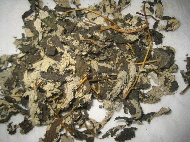 Листя малини і від температури позбавлять, і народити допоможуть