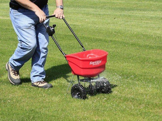 Осінній догляд за газонною травою, як правильно підготувати газон до зими