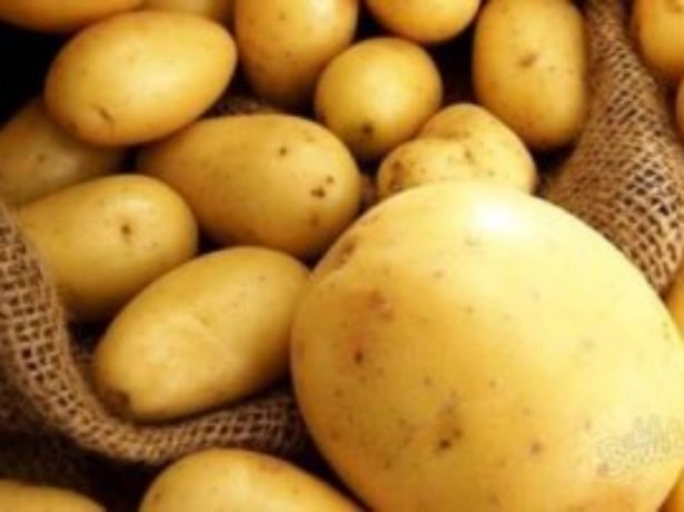 Популярні ранні сорти картоплі та особливості їх вирощування