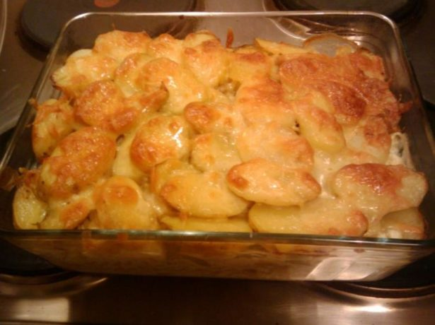Родріго: один з найперспективніших сортів картоплі