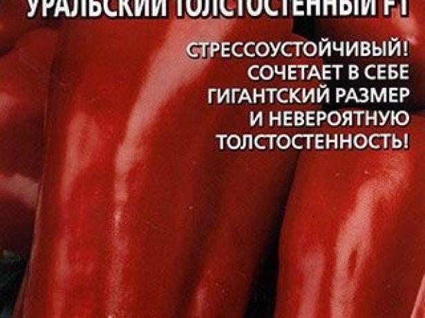 Болгарські перці в росії