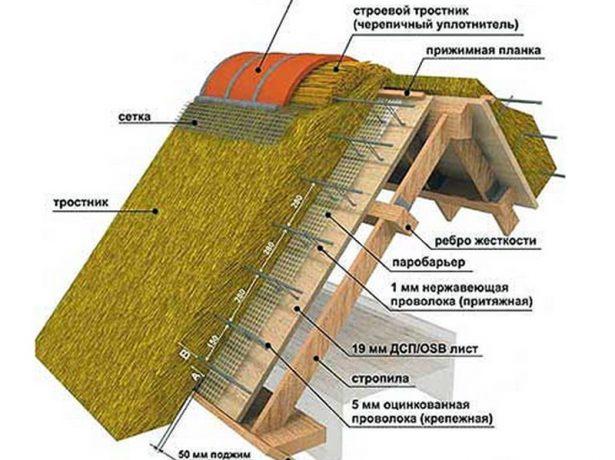 Особливості очеретяної даху