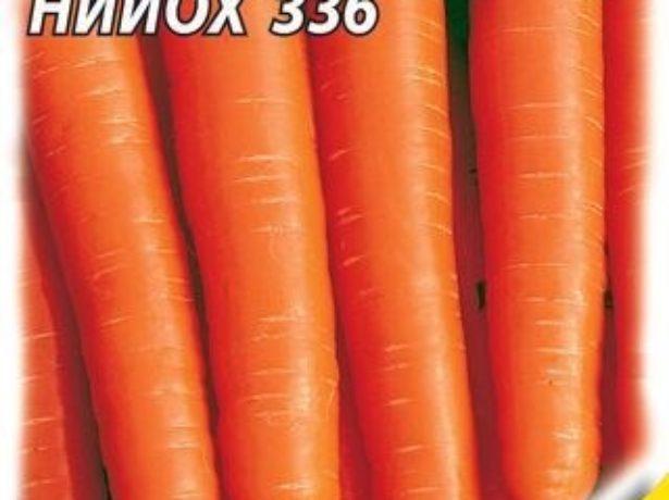 Морква-який сорт вибрати для зимового зберігання