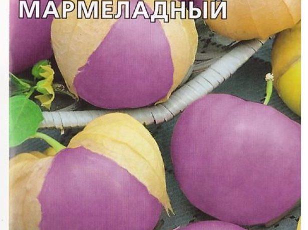 Фізаліс мармеладний-невибагливий родич томата зі смаком сливи
