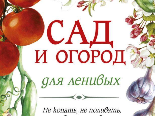 Метод галини кизими: помідори не поливати!