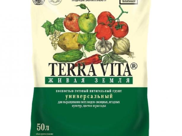 Спосіб не для ледачих: вирощуємо томати за методом терьохіних
