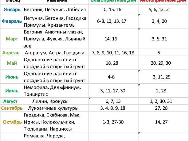 Зоряна геометрія дачника: місячний календар робіт в саду-городі на 2020-2021 рік