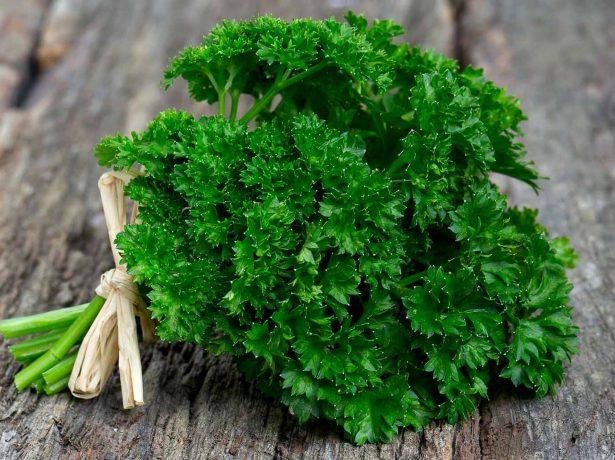 Зелені вітаміни: кріп, петрушка і кінза - що корисніше?