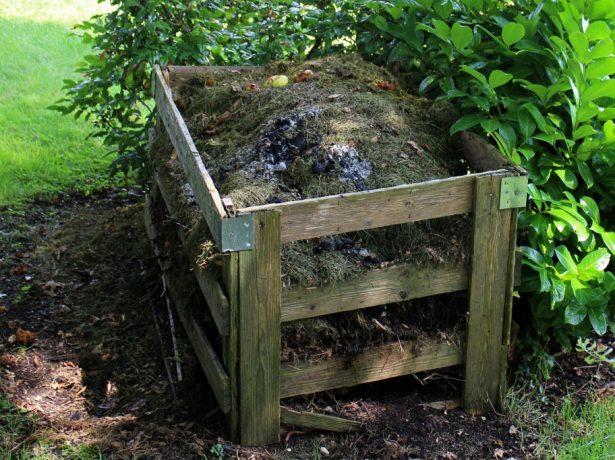 Чи потрібно прискорювати перепрівання компосту і чому дачники не шанують прискорювачі дозрівання