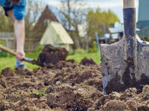 » осінні  комплексні добрива для садових культур