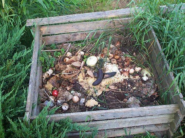 Компост своїми руками: робимо яму і купу